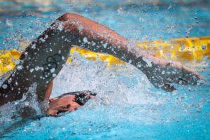 Nuoto Mente Corpo