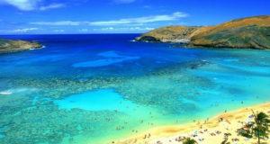 Pemba island meta insolita