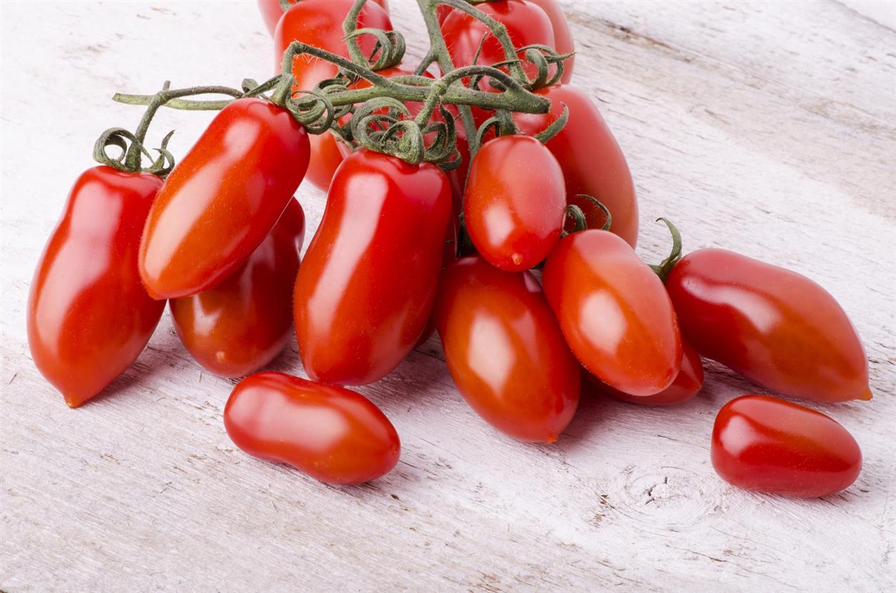 pomodori afrodisiaci