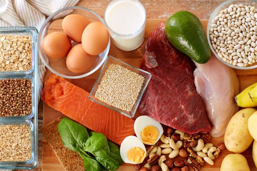 rivenditori online proteine