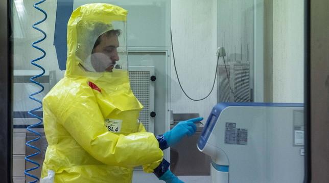 Coronavirus maschi femmine infezione
