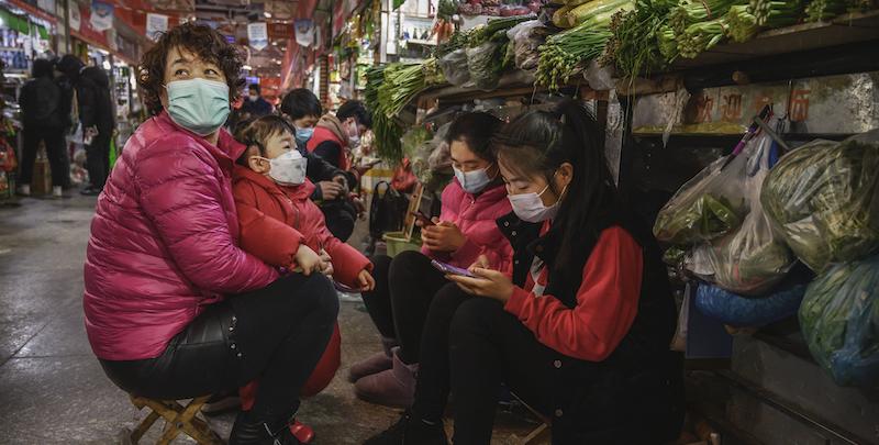 caso salmone Cina contagi