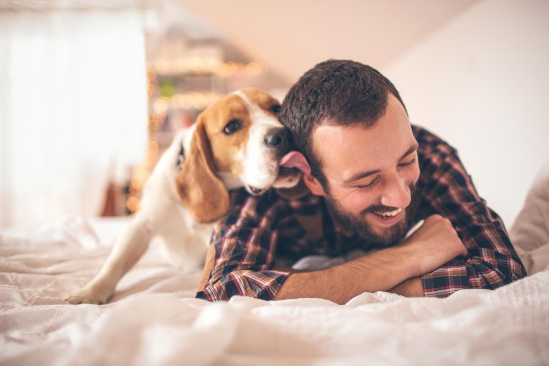 Benefici possedere animali domestici